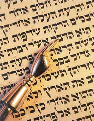 bibel dtn 14